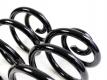 Feder Hinterachse Schraubenfeder 2er Set verstärkt für VW T4